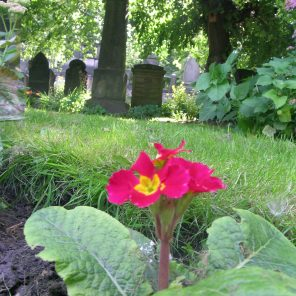 st-cuthberts-cemetery-edinburgh-west-end-scotland_4959295079_o